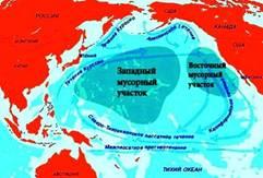 Мусорная свалка в Тихом океане.